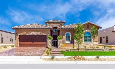El Paso Single Family Home For Sale: 14912 Hunters Grove