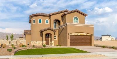 El Paso Single Family Home For Sale: 3152 Beamon