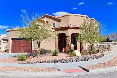 El Paso Single Family Home For Sale: 1620 Sora Way