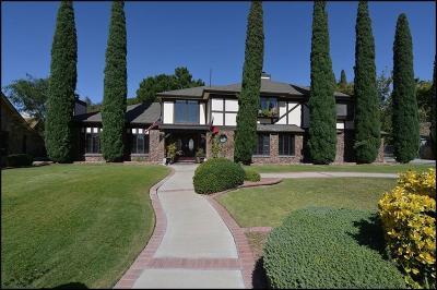 El Paso Single Family Home For Sale: 11138 Leo Collins Drive