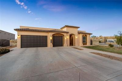 El Paso Single Family Home For Sale: 1067 Yasmin Drive