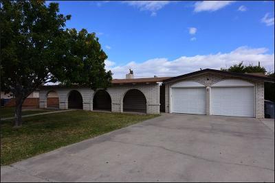 El Paso Single Family Home For Sale: 5312 Santa Teresa Drive