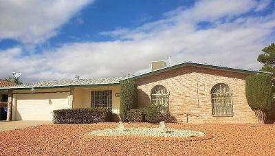 El Paso Single Family Home For Sale: 10657 Birthstone Drive