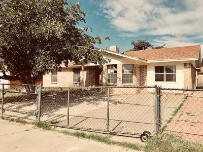 El Paso Single Family Home For Sale: 925 Saint Catherine Drive