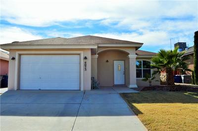 Single Family Home For Sale: 4073 Tierra Patino Lane