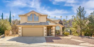 El Paso Single Family Home For Sale: 6776 Copper Ridge Drive