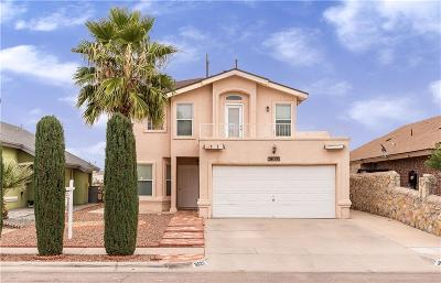 El Paso Single Family Home For Sale: 3620 La Cuesta Drive