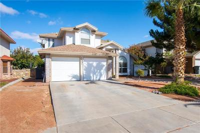 El Paso Single Family Home For Sale: 11221 Kingfish Court
