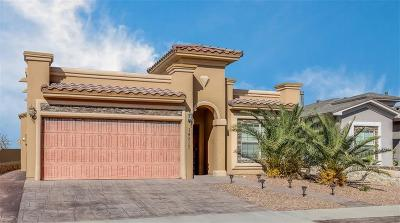 El Paso Single Family Home For Sale: 14217 Rattler Point Drive