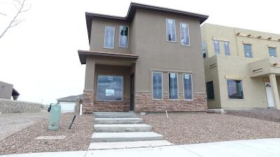 El Paso Single Family Home For Sale: 6529 Hoop Street