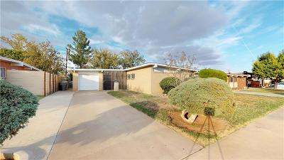 El Paso Single Family Home For Sale: 5113 Mumm Lane