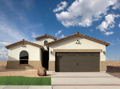 El Paso TX Single Family Home For Sale: $192,450