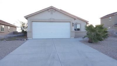Horizon City Single Family Home For Sale: 193 Horizon Point Circle