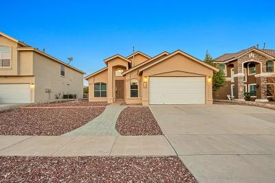 Horizon City Single Family Home For Sale: 432 Desert Dandelion Street
