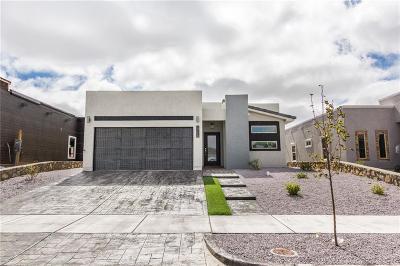 Horizon City Single Family Home For Sale: 13708 Samlesbury Avenue