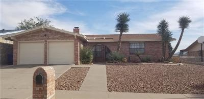 El Paso Single Family Home For Sale: 7216 Gran Vida Drive