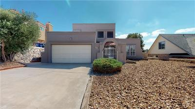 El Paso Single Family Home For Sale: 610 Bluff Canyon Circle