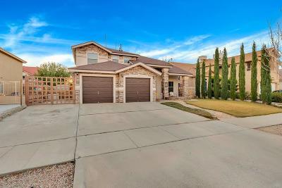 Horizon City Single Family Home For Sale: 421 Sand Verbena Street