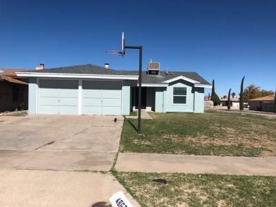 El Paso Single Family Home For Sale: 4867 Maureen Circle