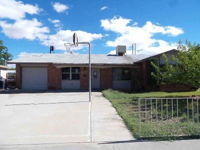 El Paso Single Family Home For Sale: 9640 Albacore Lane