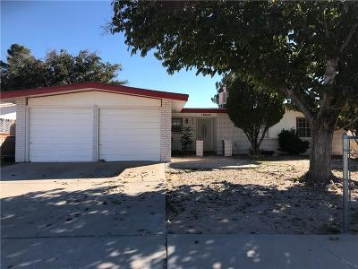 El Paso Single Family Home For Sale: 10648 Birthstone Drive