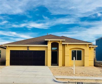 Horizon City Single Family Home For Sale: 236 South Halstead Drive