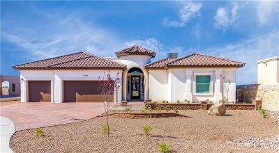 El Paso Single Family Home For Sale: 1267 Desert Sky Place