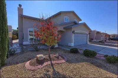 El Paso TX Single Family Home For Sale: $159,000