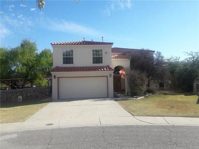 El Paso Single Family Home For Sale: 504 Sand Bar Court