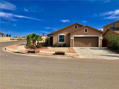 Horizon City Single Family Home For Sale: 352 Emerald Acres Drive