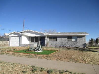 El Paso Single Family Home For Sale: 10061 Newcastle Drive