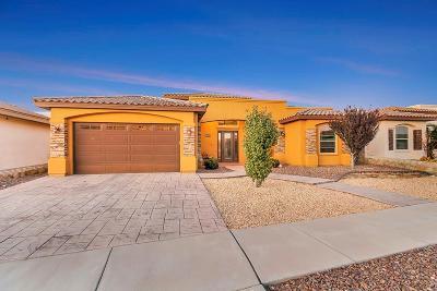 Single Family Home For Sale: 14221 Hunter