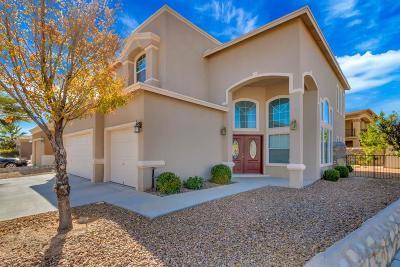 Single Family Home For Sale: 11513 Porfirio Payan Drive
