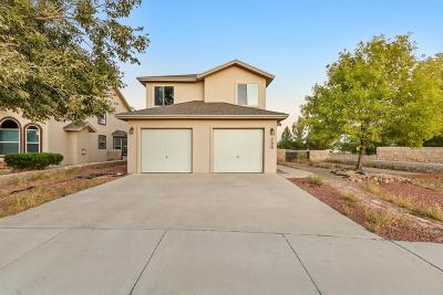 Single Family Home For Sale: 700 Desert Ash Drive
