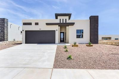 El Paso Single Family Home For Sale: 2166 Enchanted Summit Drive