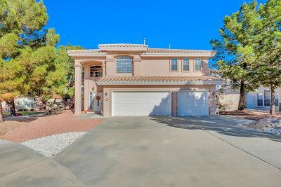 Single Family Home For Sale: 904 Via Redonda Court