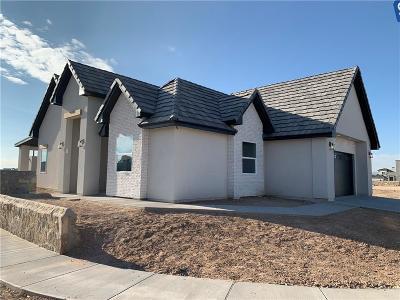 Single Family Home For Sale: 773 Pontop Hall