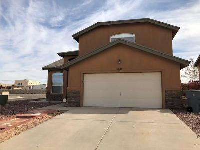 El Paso Single Family Home For Sale: 3228 Olive Point Place