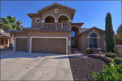 Horizon City Single Family Home For Sale: 1544 Paseo Unido Street