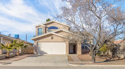 El Paso Single Family Home For Sale: 625 Wind River Avenue