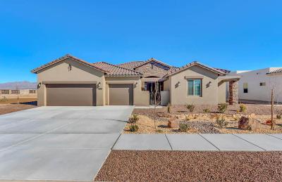 El Paso Single Family Home For Sale: 5888 Valle Sonar Avenue