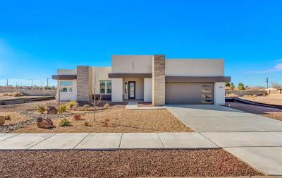 El Paso Single Family Home For Sale: 5889 Valle Sonar Avenue