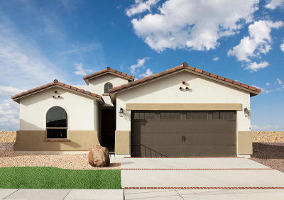 El Paso TX Single Family Home For Sale: $193,450