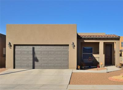 El Paso TX Single Family Home For Sale: $156,950