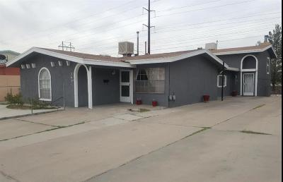 El Paso Multi Family Home For Sale: 2621 Red Sails Drive #A & B
