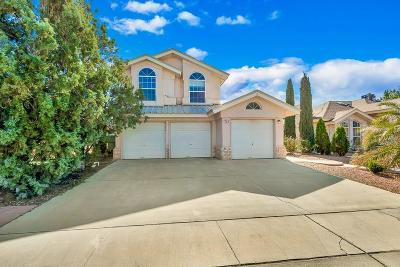 El Paso Single Family Home For Sale: 11952 Crown Royal Drive