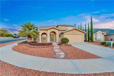 El Paso Single Family Home For Sale: 1460 Luz De Luna Place