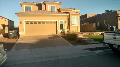 Single Family Home For Sale: 3108 Coyote Draw Place