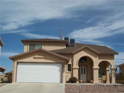 El Paso Single Family Home For Sale: 7105 Century Plant Drive