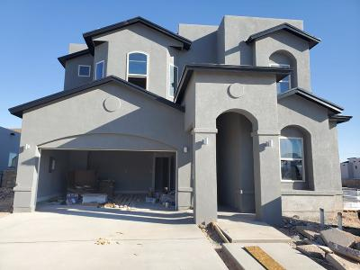 Single Family Home For Sale: 12516 Winners Circle